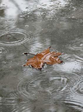 Lluvias hasta el domingo en Talavera y su comarca