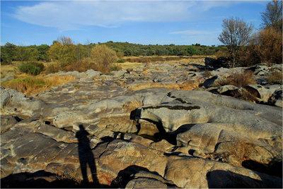 Una imagen de lo que queda del r�o Ti�tar a su paso por Monteagudo. (Foto: LVDT)