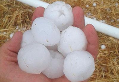 Una impresionante tormenta de granizo de gran dimensi�n causa graves da�os en diversos pueblos de la comarca de La Jara