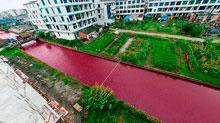 El río Yangtsé se tiñe de rojo súbitamente