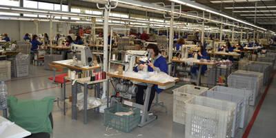 El Gobierno regional trabajará para facilitar que las empresas de Castilla-La Mancha se conviertan en exportadoras regulares