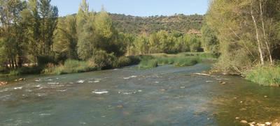 El Gobierno regional recurrirá los planes hidrológicos