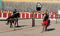 La figura del caballo recibe su particular homenaje en La Caprichosa