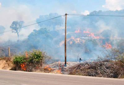 Alrededor de 10 hectáreas arden en un incendio originado junto al embalse de Cazalegas