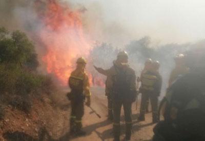El incendio de Las Herencias quema alrededor de 60 hectáreas en el paraje conocido como 'El Mecachón'