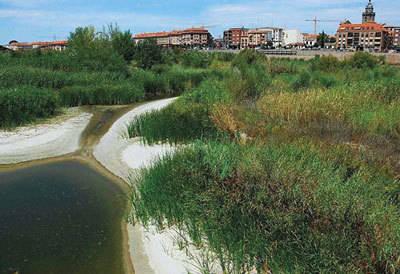 No hay paz para el río Tajo
