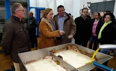 El Gobierno regional exime a los olivareros ecológicos del cumplimiento de comercializar el 20 por ciento de su producción para cobrar las ayudas