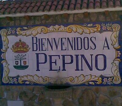 Proyectos de agua potable para Pepino, pide el PSOE
