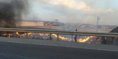 Muchos efectivos para sofocar el incendio en Talavera