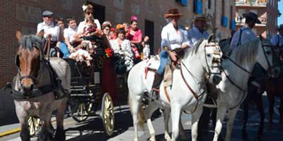Los caballos no saldrán en el desfile de San Isidro