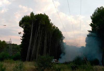 Un incendio en las inmediaciones de la Subestación de Azután afecta a 12.000 metros cuadrados de pasto y pinos propiedad de Iberdrola