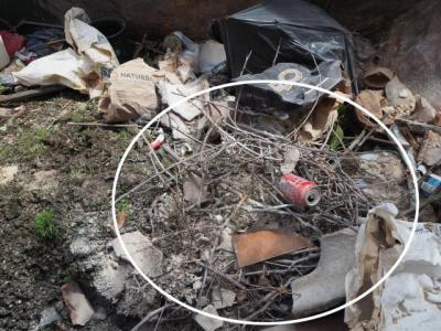 Desmontan la versión del Ayuntamiento sobre los nidos de las cigüeñas