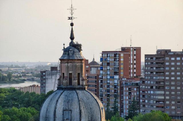 La Comisión de la Villa rechaza los nidos de cigüeña en la basílica del Prado
