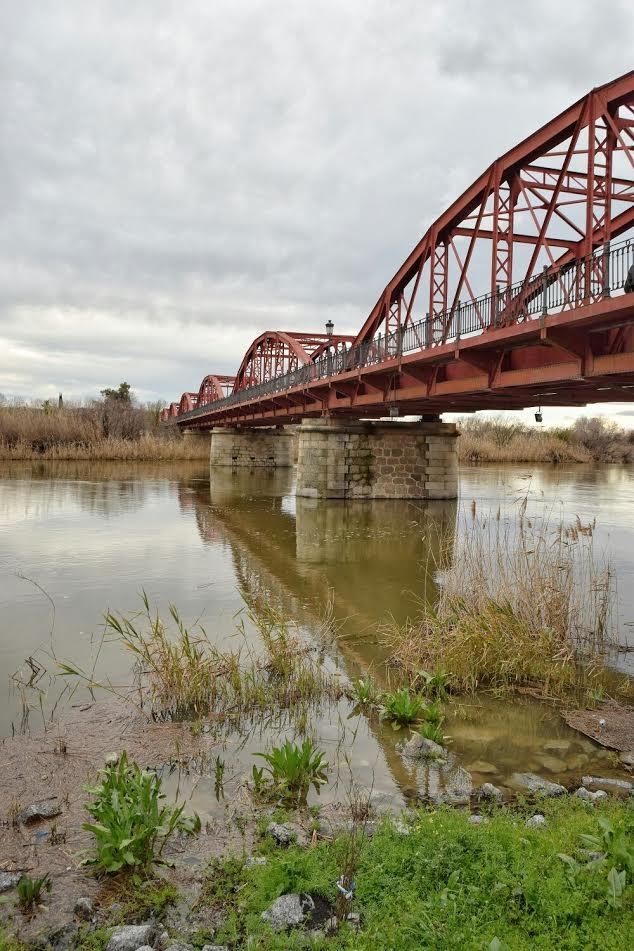 Río Tajo a su paso por Talavera
