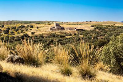 La Diputación convoca el primer concurso de fotografía para divulgar el Sitio Histórico de Melque
