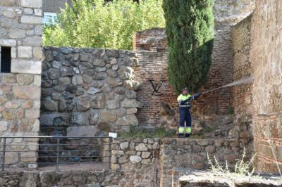 TALAVERA | Las pintadas las pagamos todos: limpieza en monumentos y edificios (fotos)