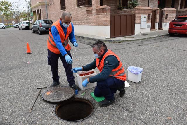 TALAVERA | El Ayuntamiento refuerza el tratamiento contra ratas
