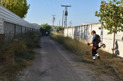 TALAVERA | Más dinero para el desbroce de solares, entorno ribereño o caminos