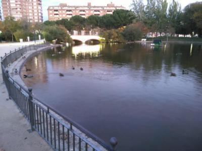 Vacían el lago de La Alameda para reparar las grietas producidas por las raíces de un árbol
