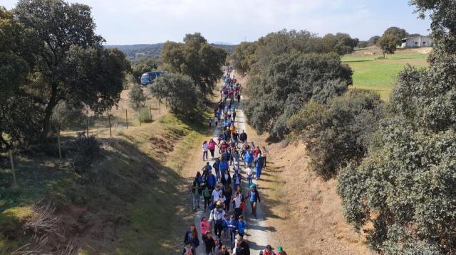 Récord de participación en la IX Vía Verde por la Integración en Talavera