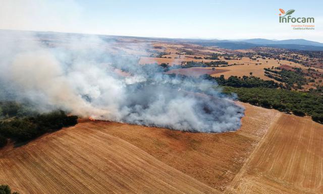 ERES ESENCIAL | Está en tu mano prevenir incendios forestales