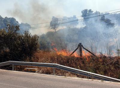 Castilla-La Mancha sufre 16 incendios forestales en un día