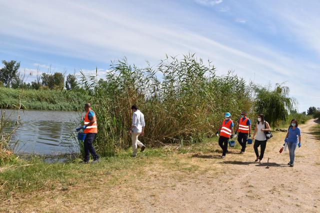 TALAVERA   El Ayuntamiento sigue luchando para evitar nuevas plagas de mosquitos
