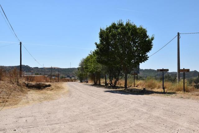 TALAVERA | Desbroce en varios caminos periurbanos