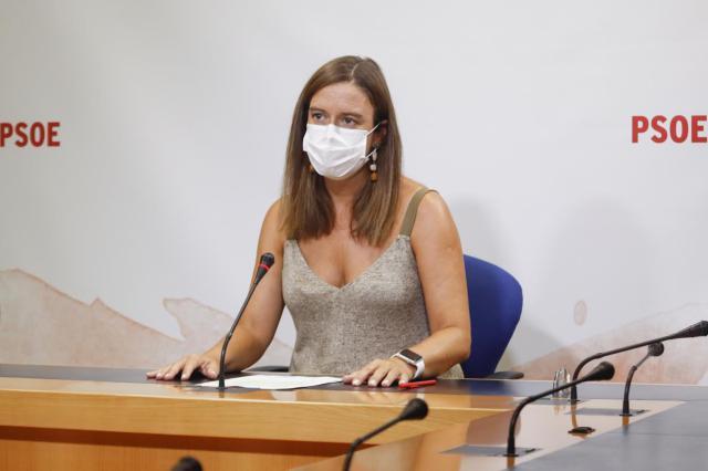 COVID | El PSOE acusa a Núñez de mentir a las asociaciones de padres con 'la vuelta al cole'