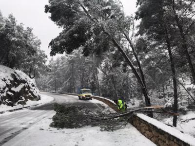 NIEVE   Más de 180 incidencias en carreteras y calles de la provincia toledana
