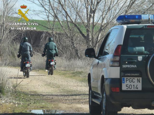 Investigado por cazar jabalíes sin permiso del titular del coto