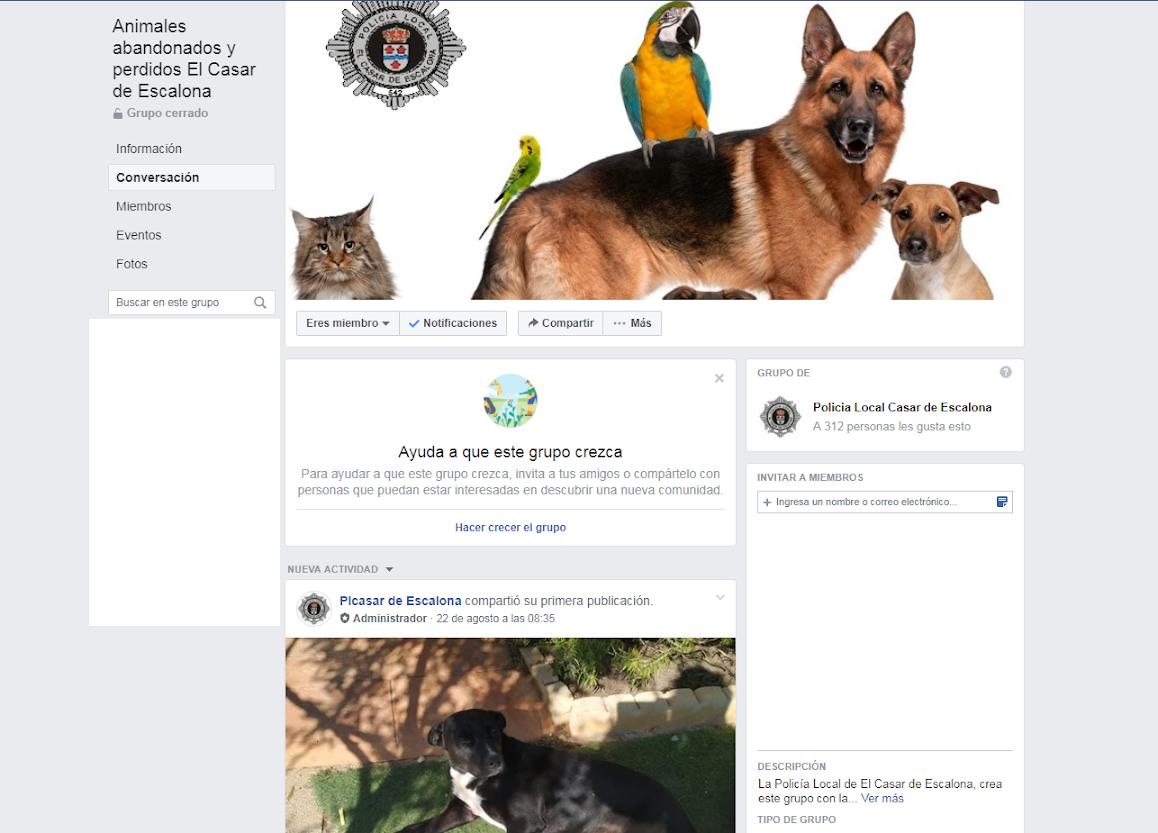La Policía Local de El Casar de Escalona crea una página de Facebook para animales perdidos