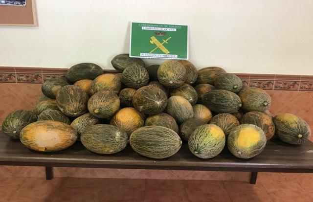 Investigan a dos varones y una menor por el hurto de 20.000 kilos de melones
