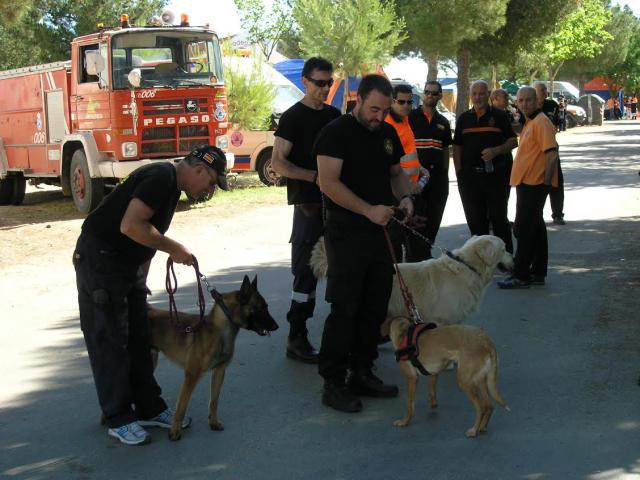 El 112 coordinó el rescate de 15 personas perdidas en el monte mientras buscaban setas