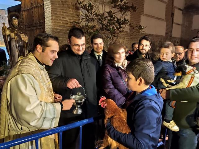 En torno a 200 personas acuden a la bendición de San Antón en Talavera