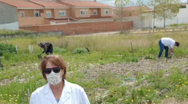 ACTUALIDAD | El huerto social del Ayuntamiento de Torrijos vuelve a ponerse en marcha