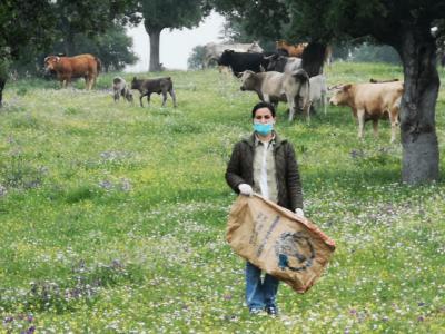 ACTUALIDAD | Inyección económica para los ganaderos de Talavera y comarca