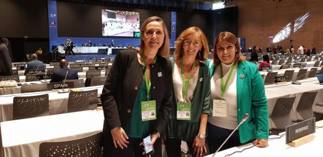 La delegación española defiende ante la UNESCO la cerámica de Talavera y Puente