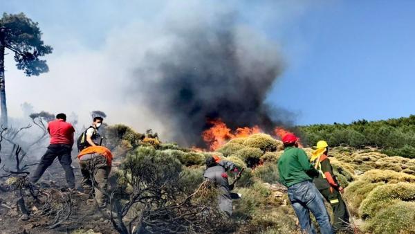 Cuatro comunidades luchan contra el incendio forestal en Sotillo de la Adrada