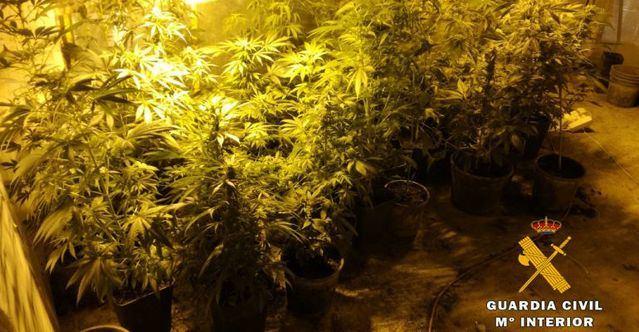 La Guardia Civil detiene a cuatro personas e interviene 35 kilos de marihuana