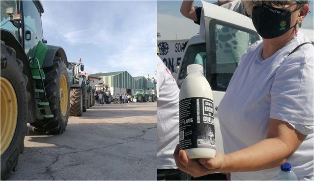 Tractorada: los ganaderos de Talavera reclaman 'precios justos' para la leche