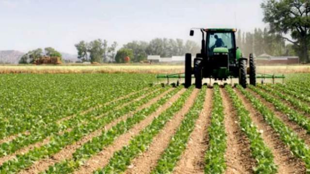ACTUALIDAD | Castilla-La Mancha ha abonado ya 555 millones de euros de ayudas de la PAC