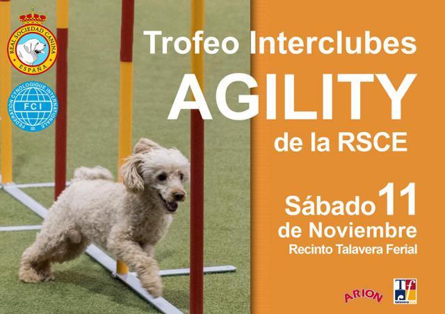 Talavera Ferial albergará un espectacular Trofeo Interclubes de Agility