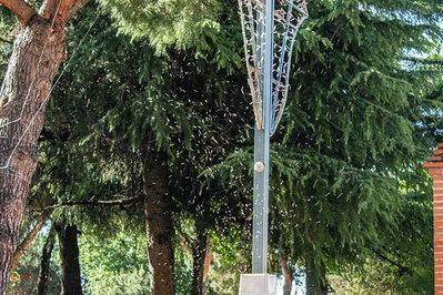 La plaga de mosquitos vuelve a crear graves problemas a ciudadanos, hosteleros y empresarios