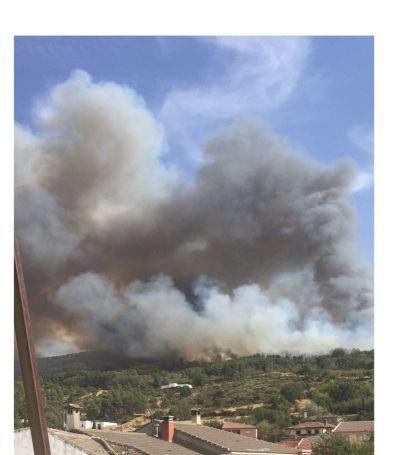 Detectado un nuevo incendio en San Pablo de los Montes de nivel 1 de alerta