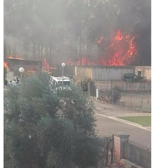 Declarado un incendio en la urbanización 'Prado del Arca'