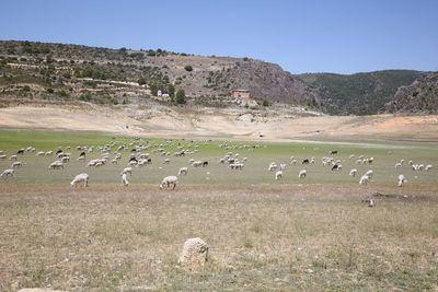 Page pedirá a las Cortes CLM imitar a Murcia y cerrar filas en defensa del agua