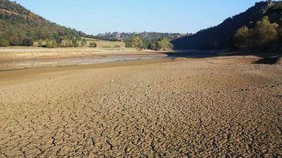 La Conferencia Hidrográfica del Tajo solicitará al Gobierno el Real Decreto de Sequía