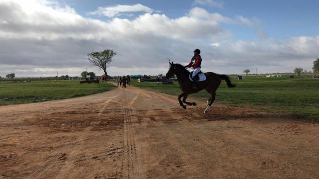Intenso fin de semana en Tomelloso para elegir a los Campeones de España de Equitación