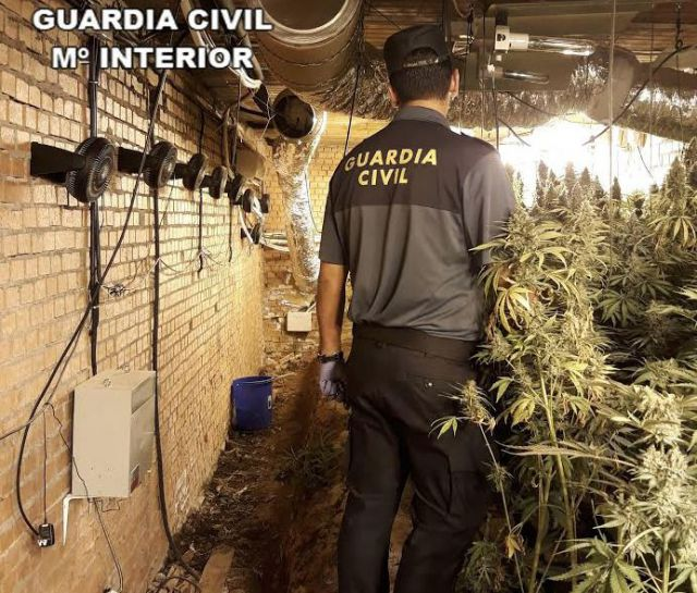 La Guardia Civil desmantela dos plantaciones de marihuana e incauta 2.000 plantas